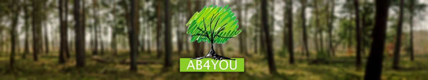 cropped-ab4you-header.png